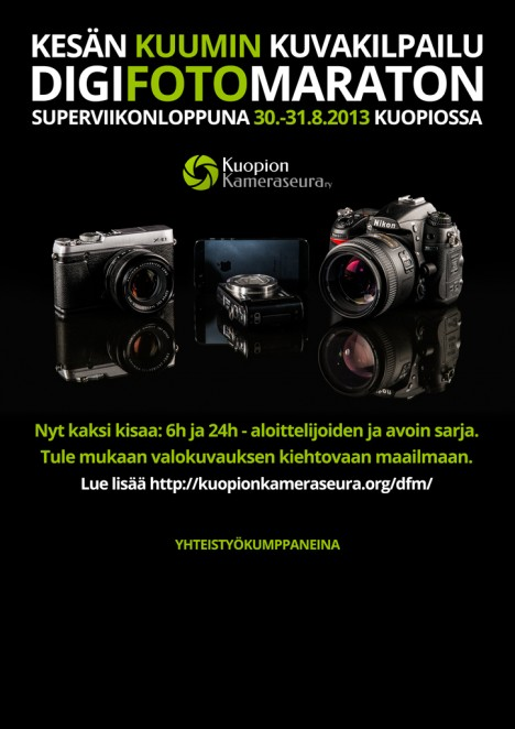 dfm-2013-juliste